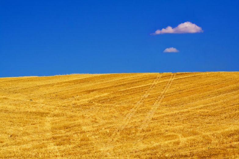 Солнечное поле в Гранаде